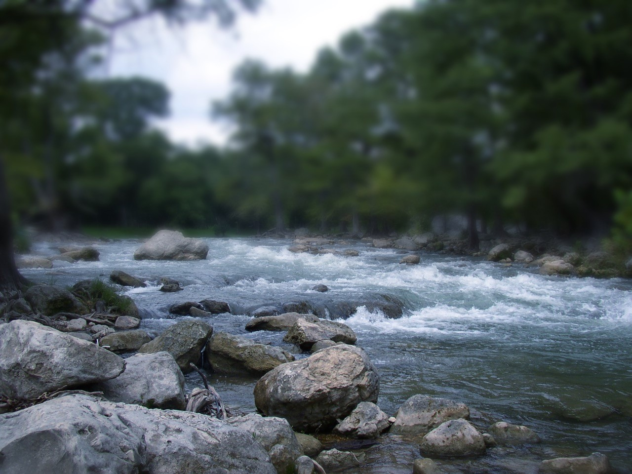 Guadalupe   Comal River Flow